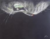 Ivana Kolic, Mačka, akril na platnu